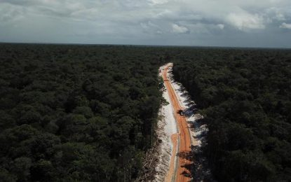 $303M Jungle highway nears completion