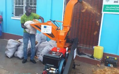 NAREI, CARDI demonstrating opportunity to transform coconut 'waste' to cash