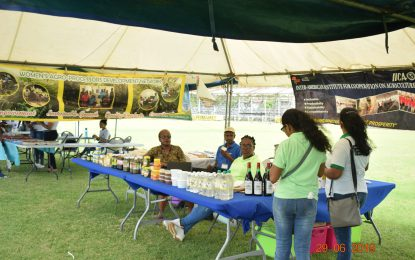 IICA promotes rural agricultural development