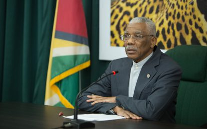 Govt committed to holding credible elections at earliest possible time – Pres. Granger