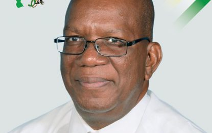 Guyana's economic growth projected to be in double digits