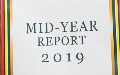 Economy grew by 4.5% – 2019 mid-year report released