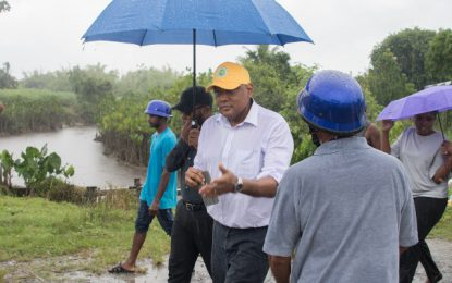 East Bank Berbice farmers encouraged after Min. Trotman's visit