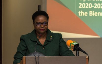 Priority areas identified to improve health sector