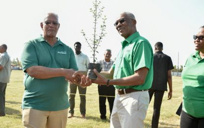 Trees vital to human existence and preservation of Guyana's Green State