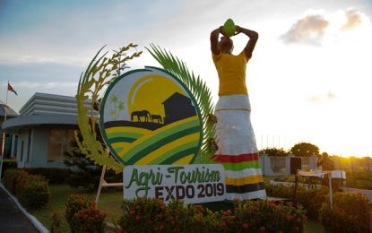 'Lady Coco' returns for Agri-Tourism Expo 2019