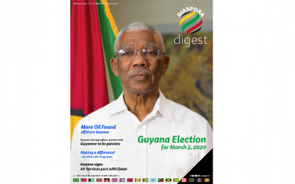 Hot off the Press! Diaspora Digest
