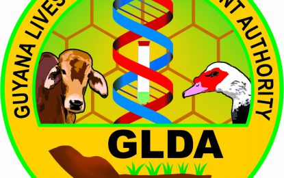 Regional, intl communities contribute to lessen African Swine Fever – GLDA