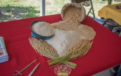Guyana's rice capturing more attention