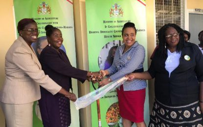 Agri-Ministry pushes for healthy living through GRAIN-H