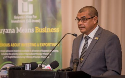 New investment framework being sought for Guyana
