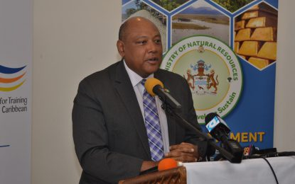 No plan to replace mining in Guyana – Min. Trotman