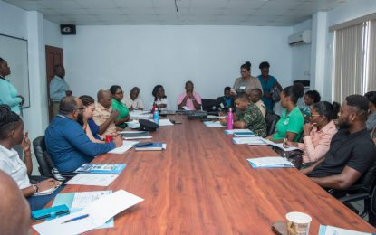 Stakeholders engaged on radiological emergency preparedness