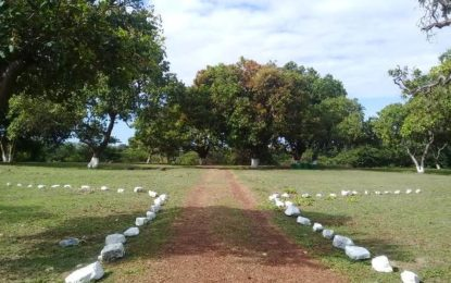 Restoration for Cashew Grove Park, Lethem.