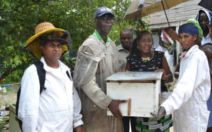 Sweet news for Linden beekeepers