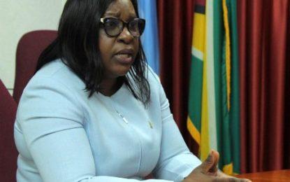 Foreign Ministry Monitoring Coronavirus Outbreak