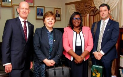 Irish Diplomats Discuss Enhancement of Bilateral Relations with Foreign Minister
