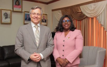 Ambassador of Finland and Foreign Minister discuss mutual interests
