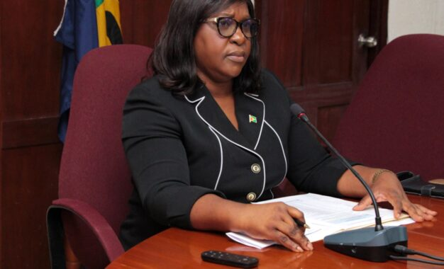 Guyana participates in Foreign Ministers meeting to discuss measures to contain spread of COVID-19